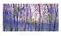 Into  The Woods Fine-Art Print