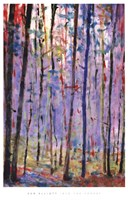 Into Forest Fine-Art Print