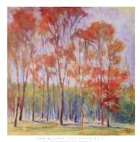 Tree Grouping II Fine-Art Print