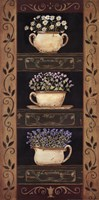 Teacup Herbs II Fine-Art Print