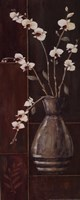Delicate Orchids I Fine-Art Print