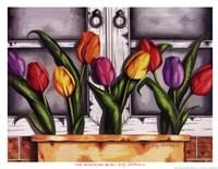 Window Box Fine-Art Print