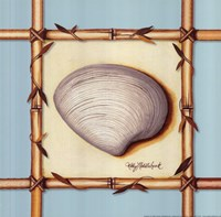 Bamboo Seashell II Fine-Art Print