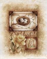 Spring Daffodil Fine-Art Print