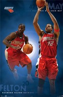 Bobcats-Team Wall Poster