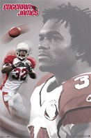 Arizona Cardinals- James Wall Poster