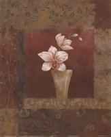 Blush Orchid II Fine-Art Print