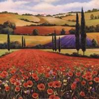 Fields of Poppies II Fine-Art Print