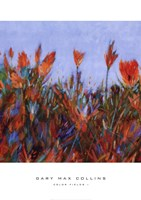 Color Fields I Fine-Art Print