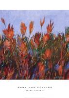 Color Fields Ii Fine-Art Print