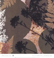 Botanica 3 Fine-Art Print