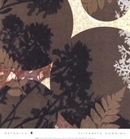 Botanica 4 Fine-Art Print