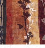 Botanica 5 Fine-Art Print