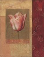 Tulipe Rosee Fine-Art Print
