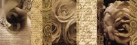 Poetic Roses 02 Fine-Art Print