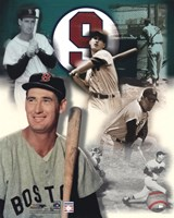 Ted Williams - Legends Of The Game Composite Fine-Art Print