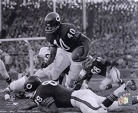 Gale Sayers Fine-Art Print