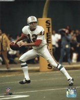 Bob Griese - Prepare to pass Fine-Art Print