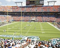 Pro Player Stadium  - N.F.L. (Dolphins) Fine-Art Print