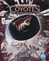 Phoenix Coyotes 2005 - Logo / Puck Fine-Art Print