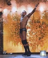 Randy Orton - #366 Fine-Art Print