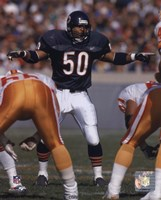 Mike Singletary - 1992 Action Fine-Art Print