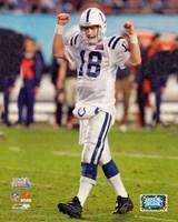 Peyton Manning SuperBowl XLI (#10) Fine-Art Print