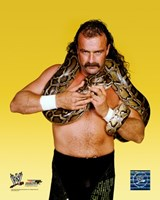 "Jake ""The Snake"" Roberts - #352 Fine-Art Print"