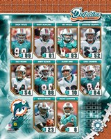 2006 - Dolphins Team Composite Fine-Art Print