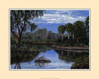 Florida Wetlands Fine-Art Print