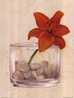 Red Flower In Bowl With Rocks Fine-Art Print