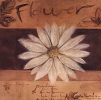 White Flower - words Fine-Art Print