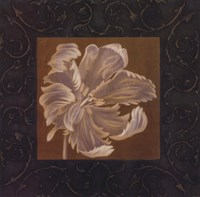 Tan Flower Fine-Art Print