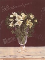 White Flowers In Glass Vase Fine-Art Print