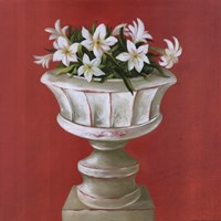 White Flowers In Glass Pot Fine-Art Print