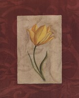 Yellow Flower Fine-Art Print