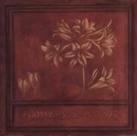 Flowers Plants Fine-Art Print