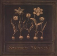 Beauvois Fleuriste Fine-Art Print