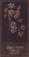 Fleurs-Pierre Lyon Fine-Art Print