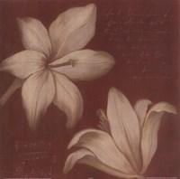 Tan Flowers II Fine-Art Print