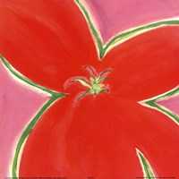 Red Flower With Pink Background Fine-Art Print