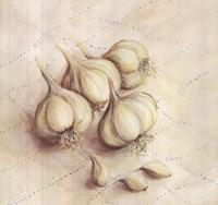 Garlic - square Fine-Art Print