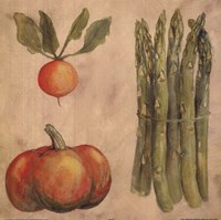 Asparagus Radish Fine-Art Print