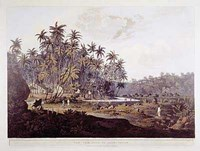 View Near Point De Galle, Ceylon Fine-Art Print