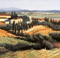 Distant Siena Fine-Art Print
