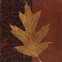 Quercus Fine-Art Print