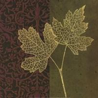 Maple Fine-Art Print