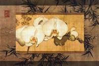 Bamboo Orchids II Fine-Art Print