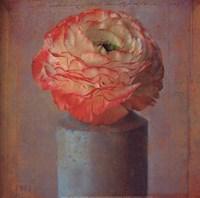 Floral Study I Fine-Art Print