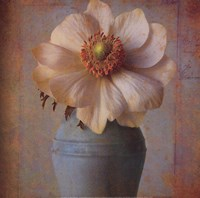 Floral Study II Fine-Art Print